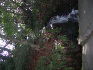 白山比咩神社琵琶滝