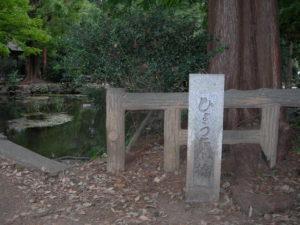 井の頭公園ひょうたん池
