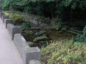 井の頭公園お茶の水