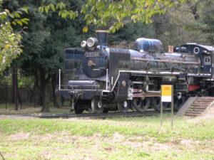 C57 3